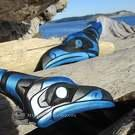 Pair of Stellar (Blue) Jay carvings by Sarah Robertson